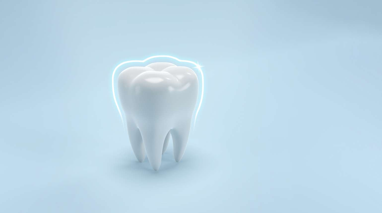 Partes de los dientes
